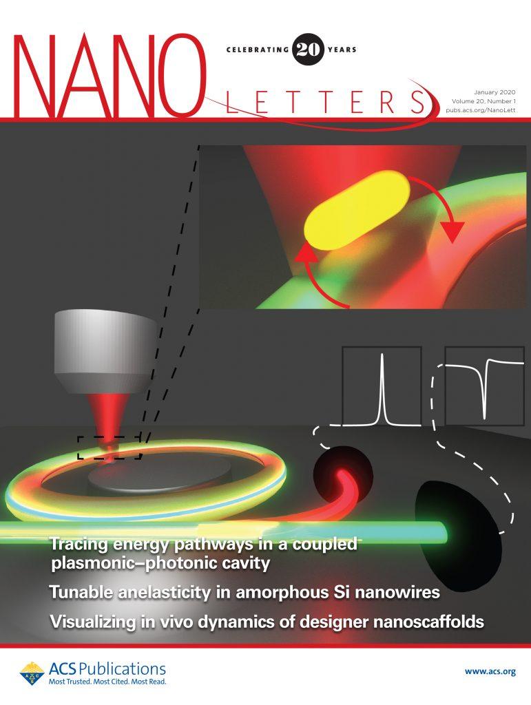 NanoLetters Cover